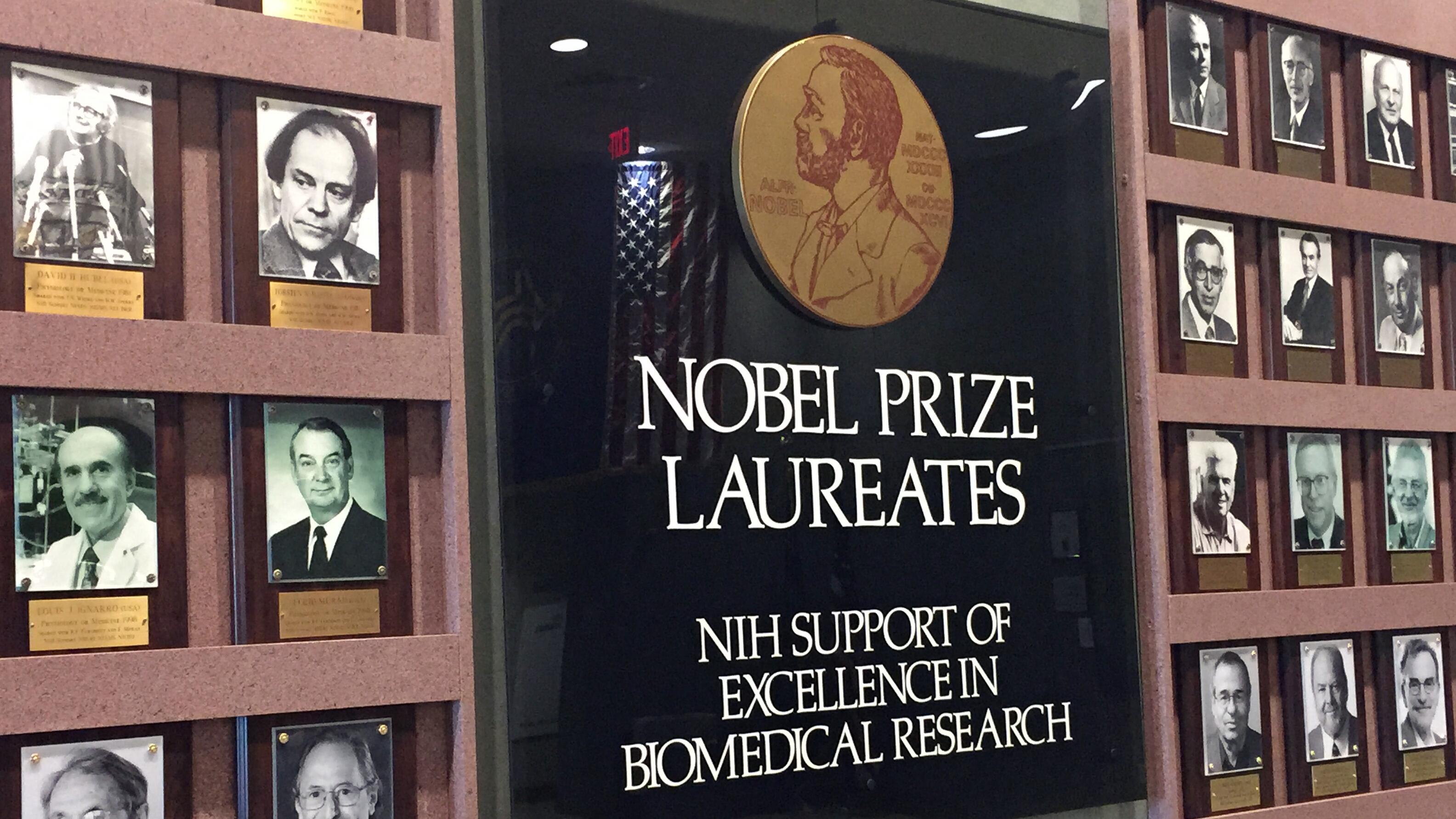 Nobel Sastra Ditiadakan Tahun Ini