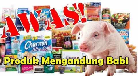 Hindari Makanan Dengan 33 Istilah Ini Yang Mengandung Babi