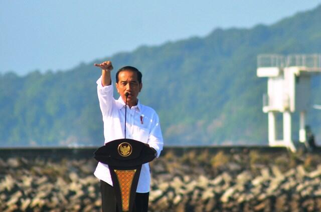 Jokowi Ingin Tangkap Buaya di Papua