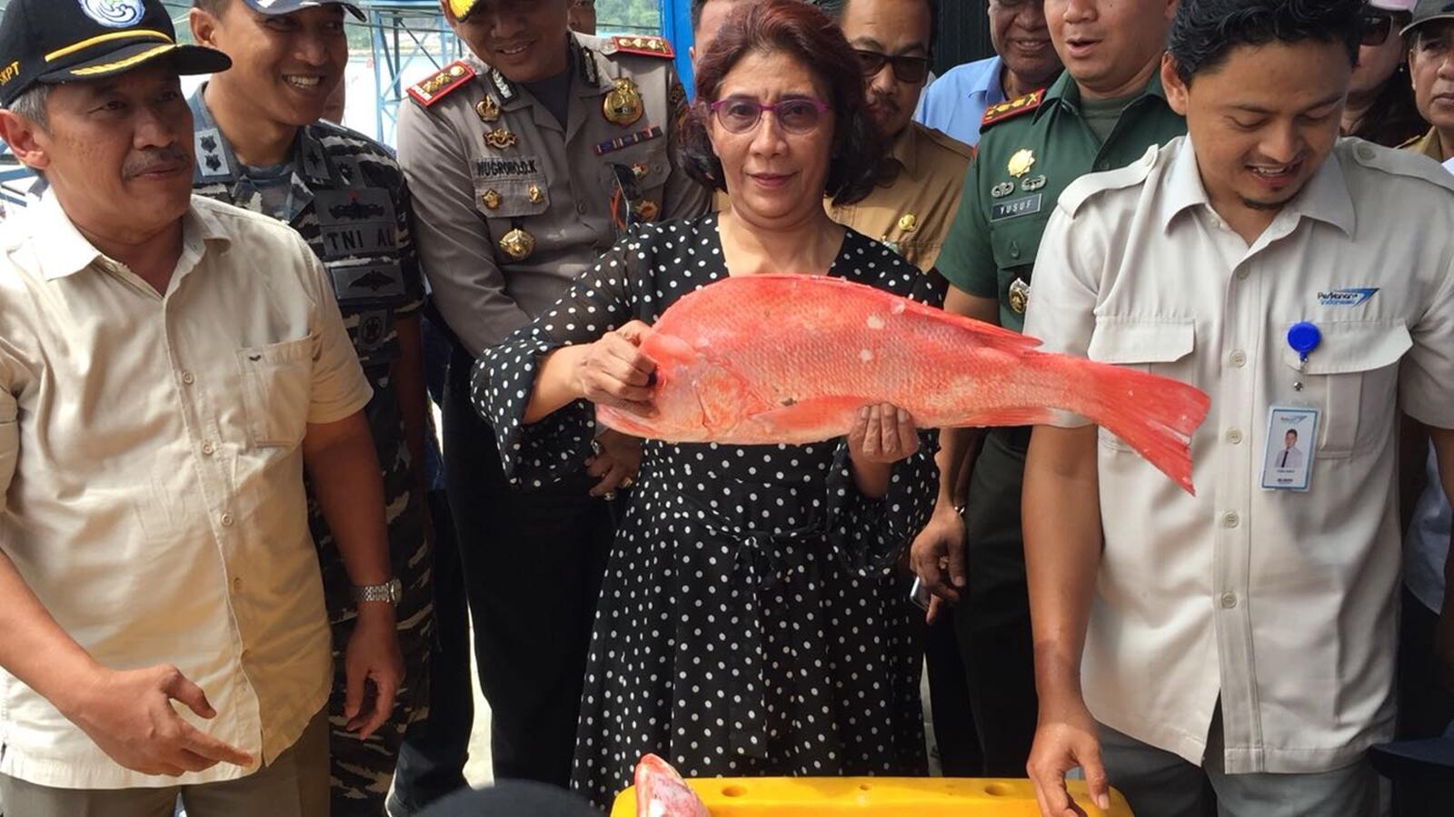 Kementerian Susi Pudjiastuti Upayakan Pajak 0% untuk Ekspor Ikan ke UE