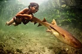 Kenapa Suku Bajau Bisa Menyelam Lama Di Dalam Air