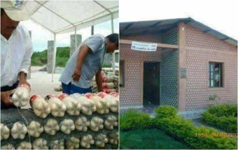 Beda Dari Yang Lain, Rumah Ini Dibangun Dengan Botol Bekas!!! Wow