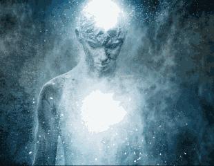 Demi Mengejar Keabadian,ilmuwan Rela Membuatkan Surga Kecil Untuk Hewan Ini
