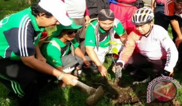 [COC GL] Pohon Ulin: Riwayatmu Kini...