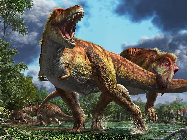 Dinosaurus Punah 66 jt Tahun Lalu? Salah Besar gan. Inilah Dinosaurus yang Tak Mati