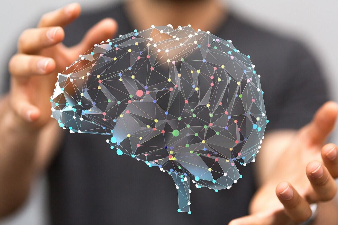 Taukah Kamu Kalau Otak Tidak Pernah Berhenti Tumbuh ?