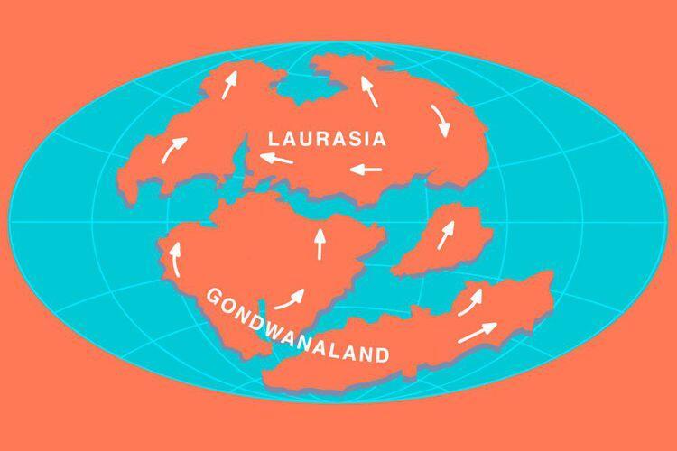 Penemuan Ini Ubah Pengetahuan Kita tentang Pecahnya Pangea