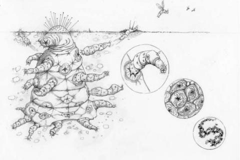 Ilmuwan Oxford Tunjukkan Wujud Alien Yang Sebenarnya.bentuknya Jauh Dari Harapan