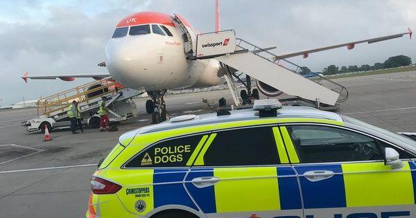 Ulah Penumpang Dugem di Pesawat, Penerbangan ke Praha Dibatalkan