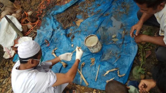 Buaya 4 Meter Tangkapan Warga Lingga Dibelah, Isinya Tulang Manusia