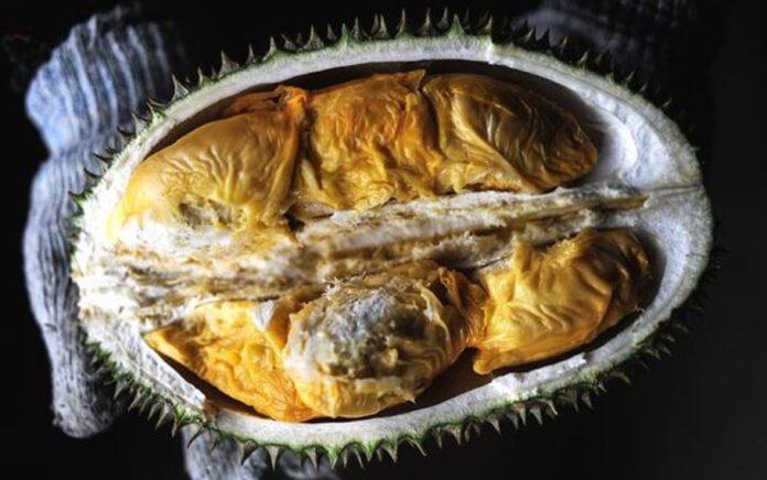 Thailand Akan Kirim Durian ke Luar Angkasa