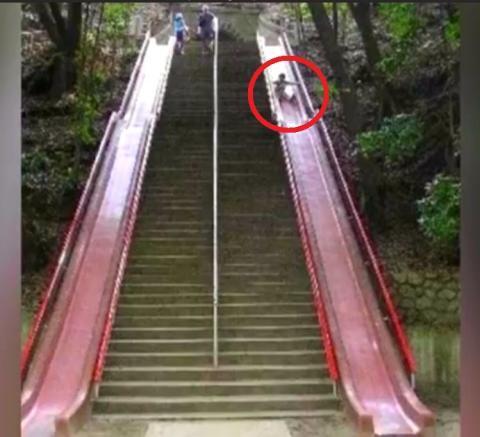 Apa Jadinya Ada Eskalator Khusus Trolly? Begini Hasilnya