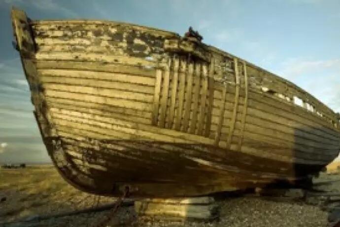 Benarkah Kayu Kapal Nabi Nuh AS Berasal Dari Indonesia? Inilah Faktanya!