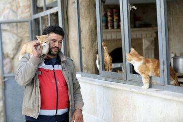 Di Tengah Perang Suriah, Pria Ini Dirikan Klinik Hewan