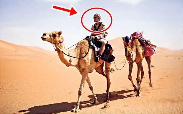Sesuai Dengan Sabda Rasul, Inilah Alasan Kenapa Negara Arab Sulit Bersatu