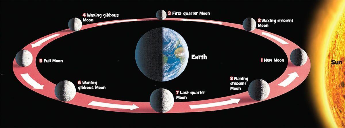 Pergerakan Bumi Semakin Melambat dan Bulan Lah Penyebabnya