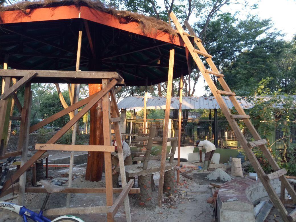 """""""Night Zoo"""" Cita-cita KBS yang Akan Segera Terwujud"""