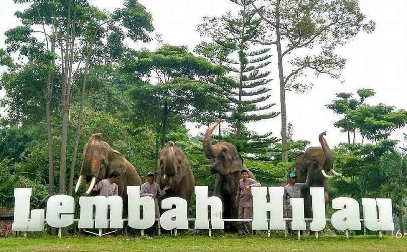 Lembah Hijau Referensi Wisata Bagi yang Mudik ke Lampung