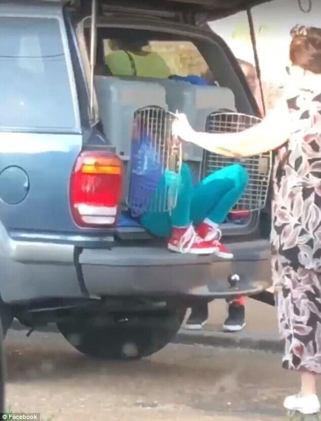 Nenek Ini Tega Masukin Cucunya Kedalem Kandang Anjing Dan Dibawa Pergi Sejauh 40 Km