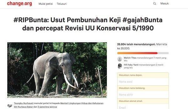 Sayembara! Barang Siapa Mengungkap Pembunuh Gajah Bunta, Maka…