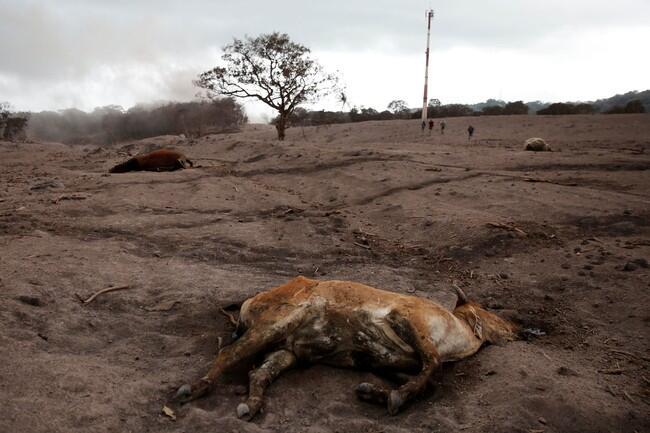 Foto Kekuatan Alam yang Maha Dahsyat