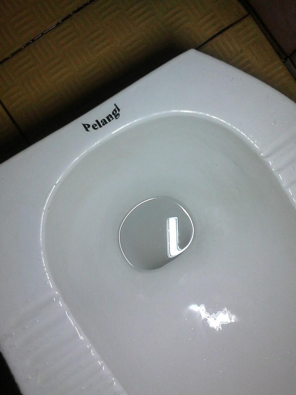 Pelangi Di WC Ku