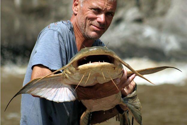 5 Ikan Paling Buas di Dunia, Berani Pelihara?