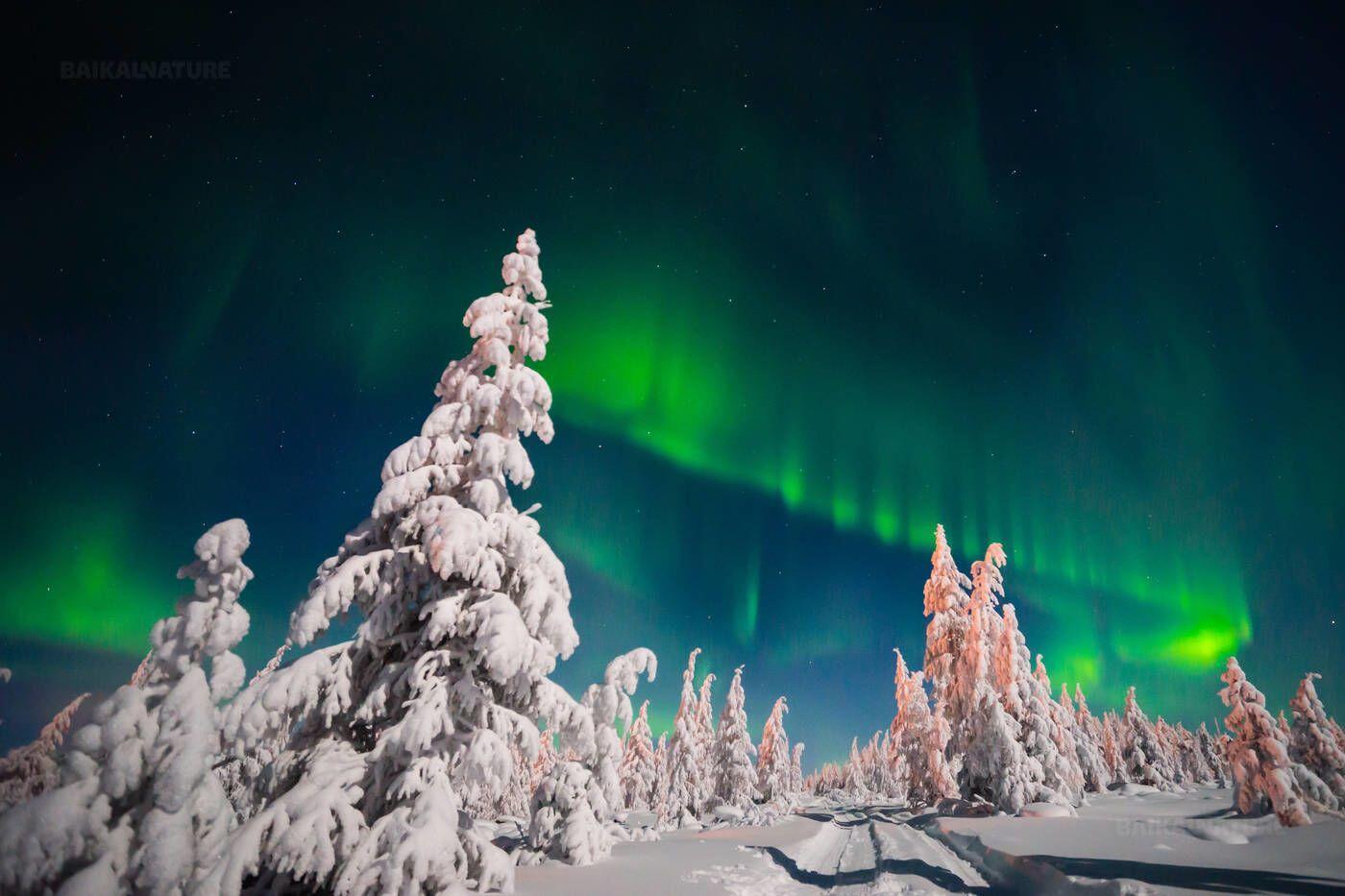 5 Tempat Terbaik untuk Menikmati Aurora di Rusia