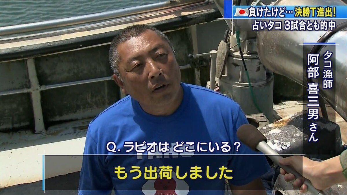 Nasib Tragis Gurita Peramal yang Jitu Ramalkan 3 Laga Timnas Jepang
