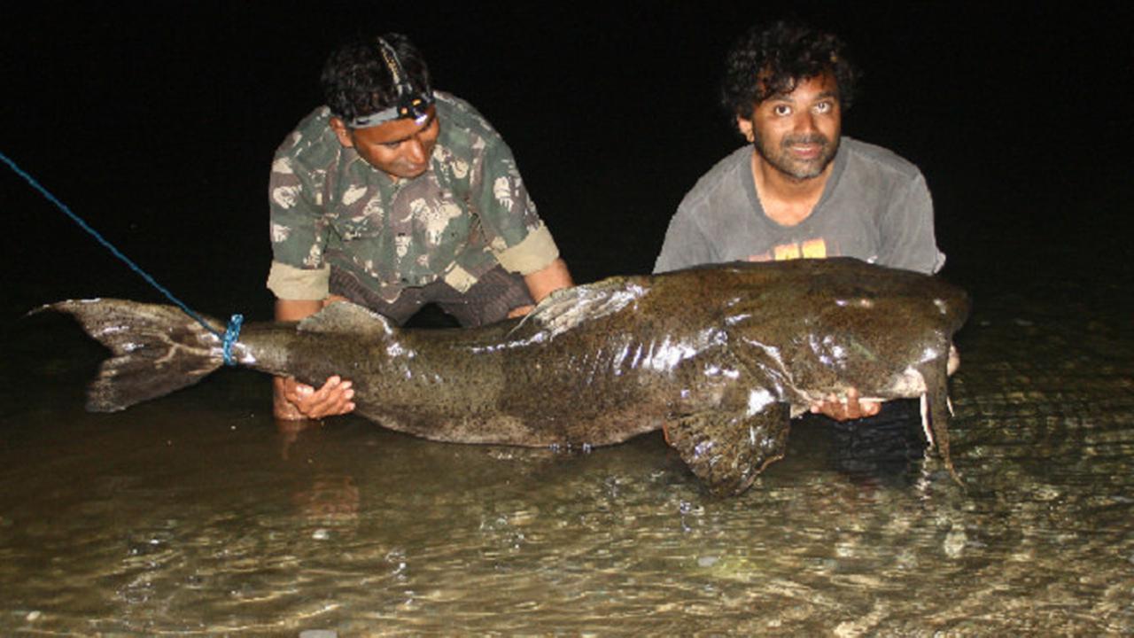Inilah 6 Ikan Paling Mengerikan di Dunia, Salah Satunya Ada di Indonesia