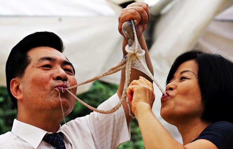 Sadis, 15 Makanan Ini Disajikan dengan Cara Menyiksa Binatang!