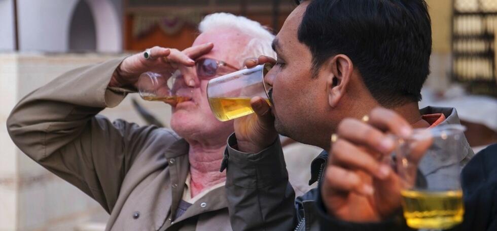 Urine Sapi Mengandung Zat Penyembuh Kanker?