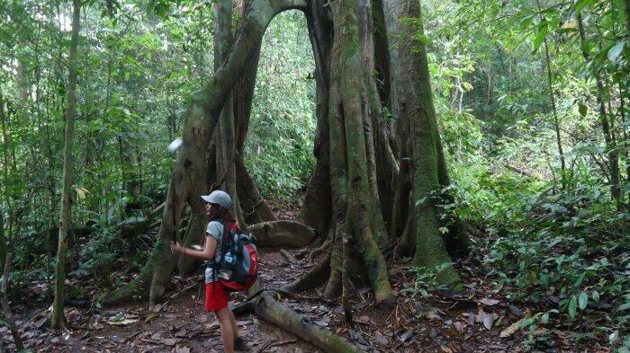 Tempat-tempat di Kalimantan ini penuh sejarah nan angker!