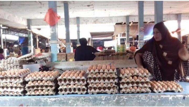 Musim Nikah, Harga Telur Ayam di Enrekang Naik Jadi Rp 45 Ribu per Rak