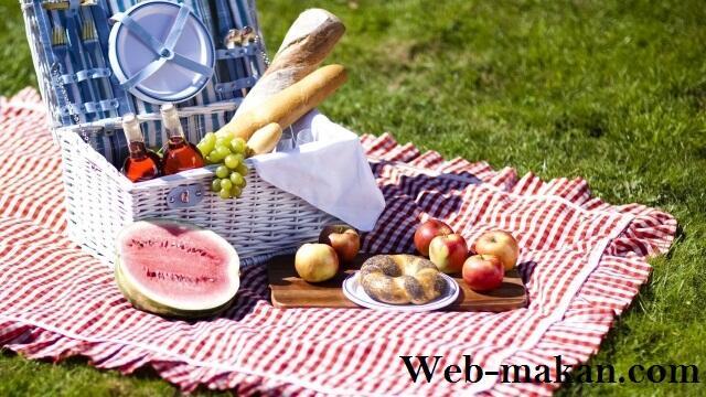Piknik bersama keluarga ? Coba deh buat bekal piknik yang enak dan praktis ini !