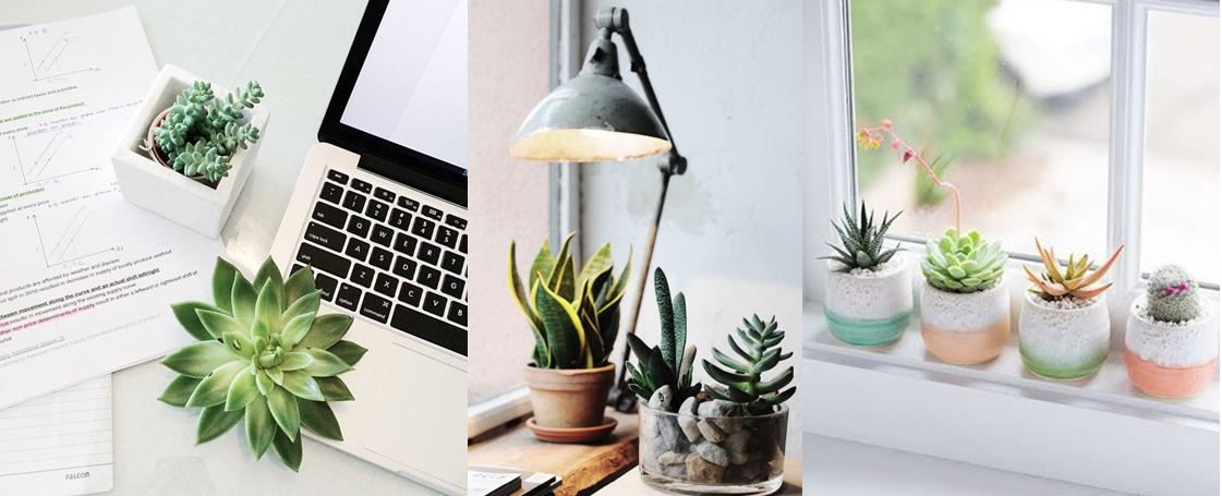 10 Benda Kekinian buat Dekorasi Kamar Sista yang Instagramable