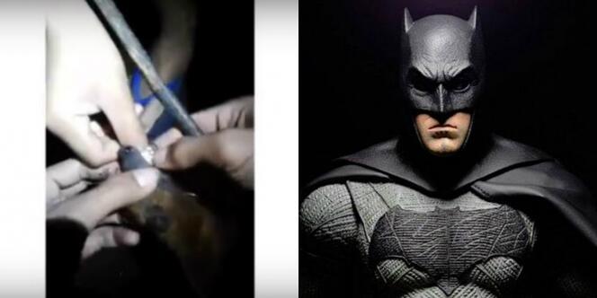 Nahas, Nasib Bocah Minta Digigit Kelelawar Karena Percaya Jadi Batman