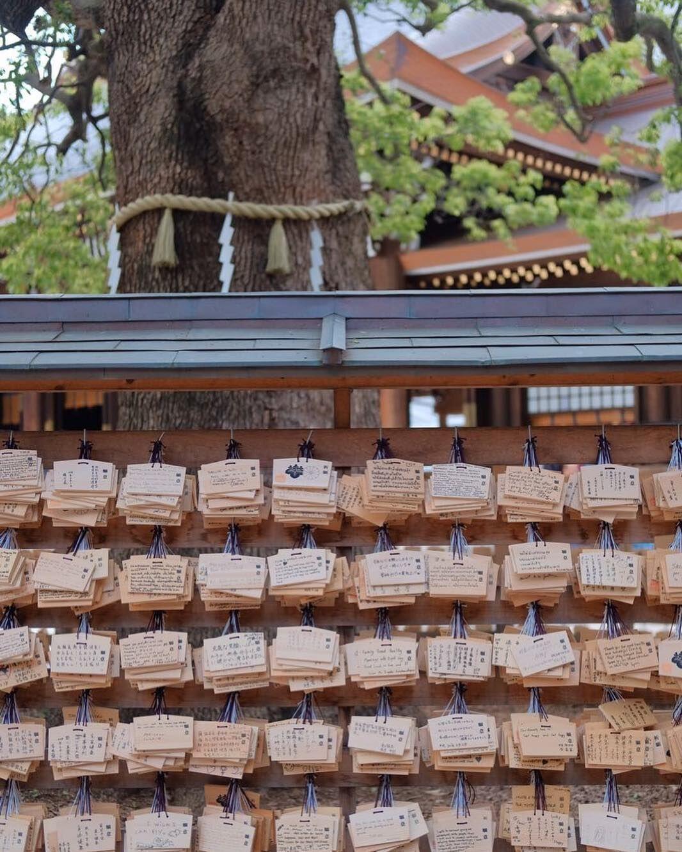 10 Destinasi Seru Liburan Vino G. Bastian di Jepang, Unik Banget!