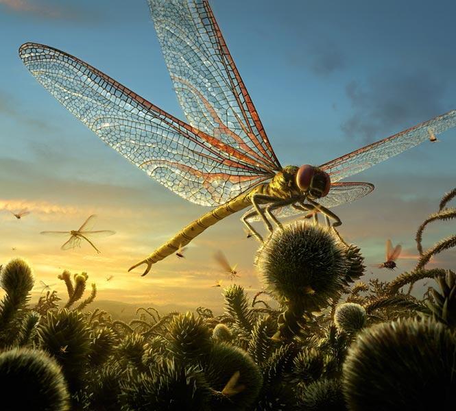 Saat Bumi Dipenuhi Seranga2 Raksasa - Part 5: Karboniferus