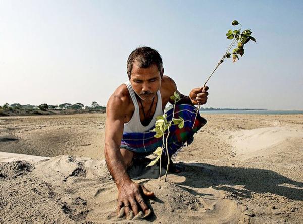 40 tahun yang lalu menanam pohon, hasilnya baru kerasa sekarang. Keren sih ini.