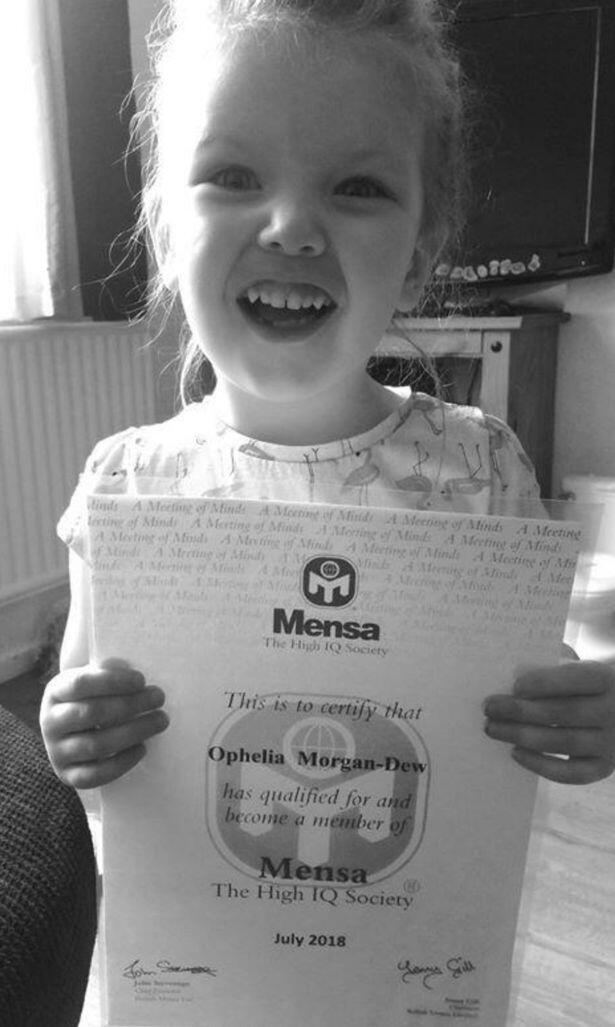 Kenalin Ophelia, Gadis 3 Tahun yang IQ-nya Melebihi Albert Einstein