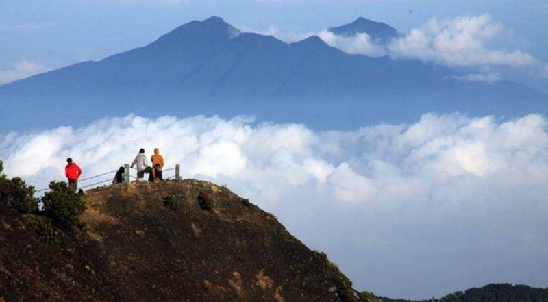 #IniIndonesiaku 5 Cagar Biosfer Indonesia yang Diakui UNESCO