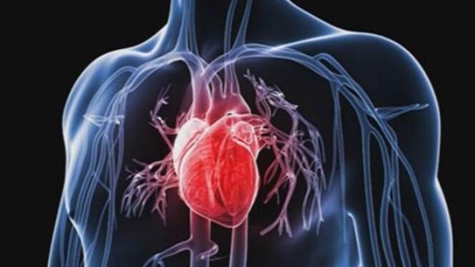 Apakah Multivitamin Beneran Bermanfaat Untuk Kesehatan Jantung ?