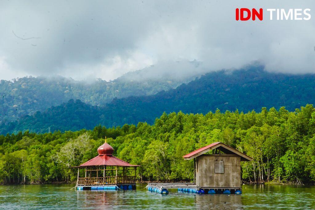 15 Potret Seru Geoforest Mangrove Tour Langkawi, Bikin Susah Move On!