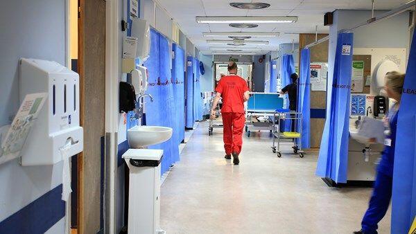 Untuk Kali Pertama, Virus Monkeypox Muncul di Inggris