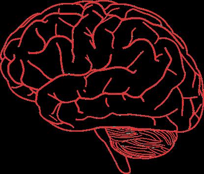 Otak Juga Butuh Oksigen, Mau Tau Caranya?