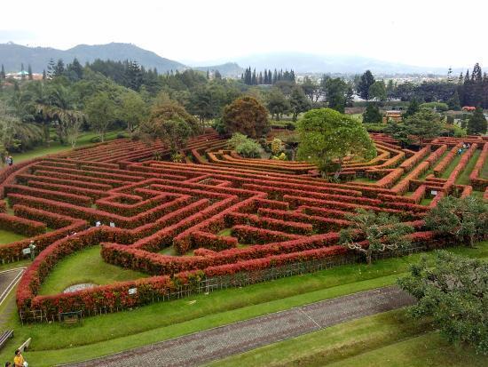 Serasa Main di Maze Runner, Inilah 5 Taman Labirin Terbaik di Indonesia