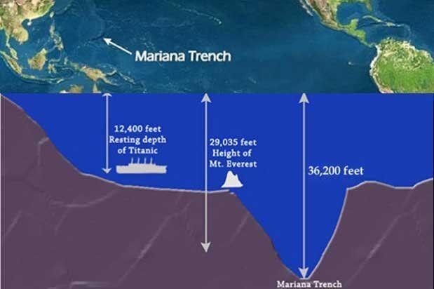 Peneliti Temukan 3 Spesies Ikan Aneh di Dasar Laut Samudra Pasifik
