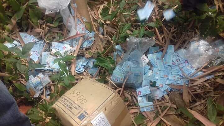 Ribuan E-KTP Ditemukan di Kebun, Ini Penjelasan Disdukcapil Serang
