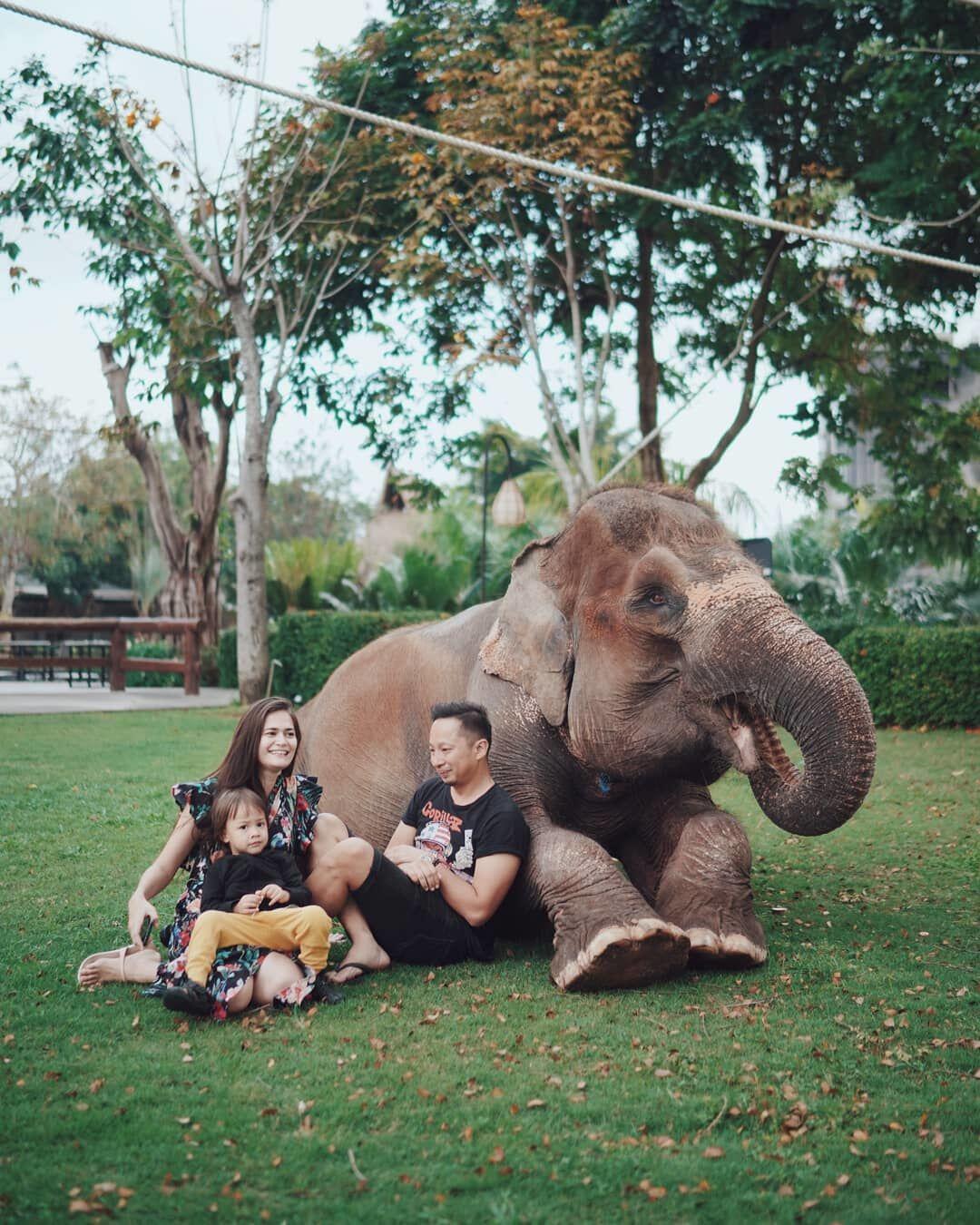 10 Potret Serunya Keluarga Ringgo Agus Liburan ke Bali, Kocak Banget!